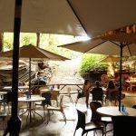 CAVE CAFE(ケイブカフェ)鍾乳洞の風景
