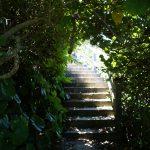 久高島(くだかじま)ヤグルガーの自然のトンネル