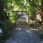 浜比嘉島(はまひがじま)シルミチュー