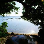カフェ浜辺の茶屋(かふぇ はまべのちゃや)海と光