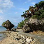 浜比嘉島(はまひがじま)のアマミチュー