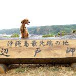 沖縄島最北端の地 辺戸岬(へどみさき)