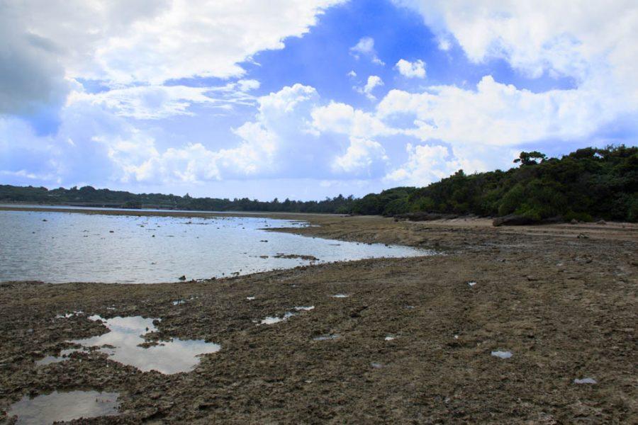 ジャネー洞(じゃねーどう)の海