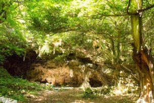 ジャネー洞(じゃねーどう)の洞窟