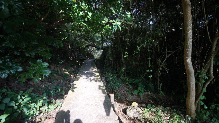 浜川御嶽(はまがわうたき)