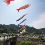 沖縄のこいのぼり 奥ヤンバル鯉のぼり祭り