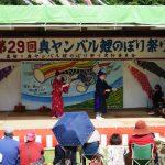 奥ヤンバル鯉のぼり祭りのイベント