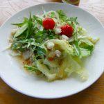 Cafe森のテラス(かふぇもりのてらす)前菜サラダ