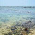 大度浜海岸(ジョン万ビーチ)海の透明度
