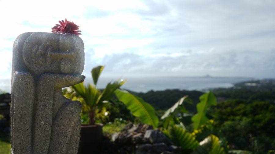 亜熱帯茶屋(あねったいちゃや) の置物と風景