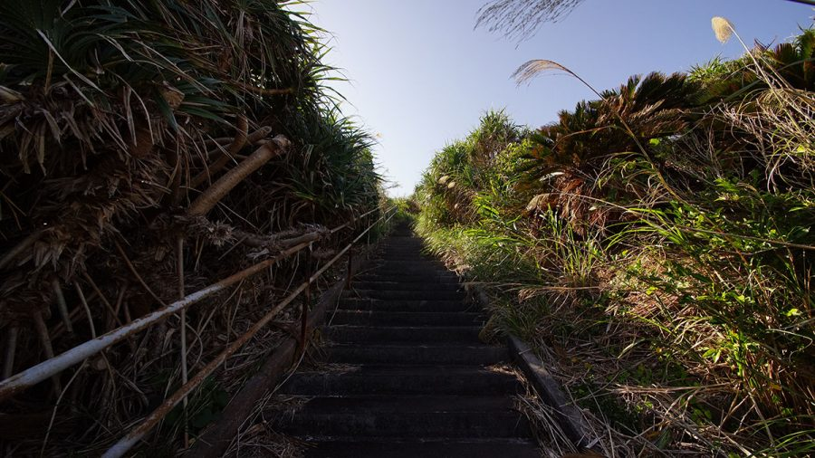 知名崎灯台(ちなさきとうだい)の道