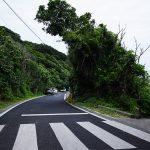 玻名城ビーチ(はなしろびーち)道