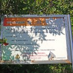 塩川 国指定天然記念物(しおかわ くにしていてんねんきねんぶつ)の看板