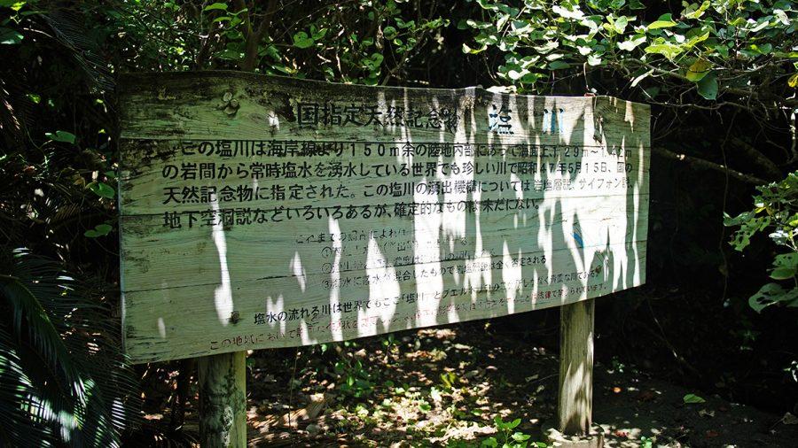 塩川 国指定天然記念物(しおかわ くにしていてんねんきねんぶつ)説明文