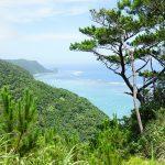 ジュゴンの見える丘(じゅごんのみえるおか)開ける場所