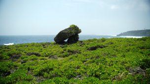 Cape Arasaki(けーぷ あらさき)糸満の海岩