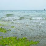 宮城島 ウクの浜(うくのはま)の風景