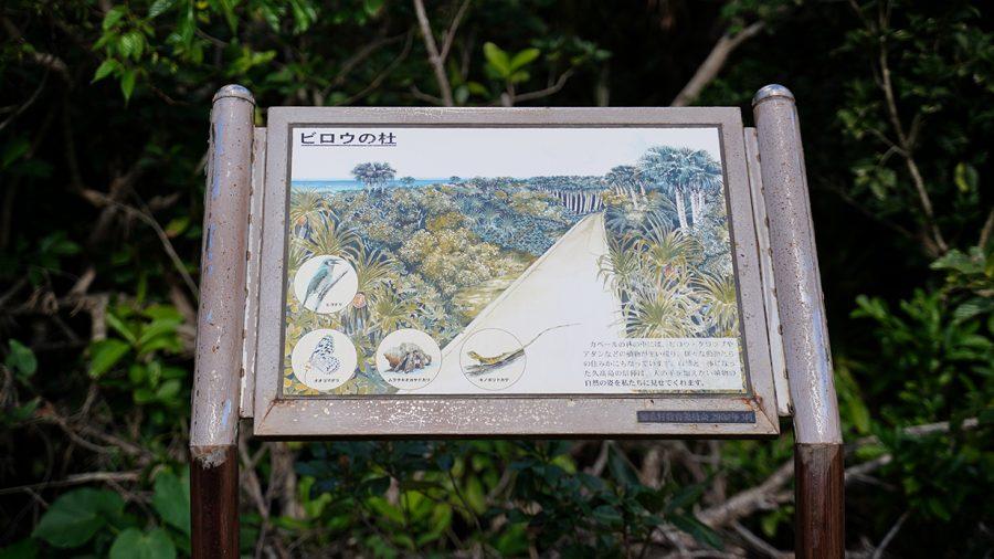 久高島(くだかじま)